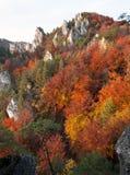 Να εξισώσει τη φθινοπωρινή κόκκινη χρωματισμένη άποψη από τα δύσκολα βουνά Sulov Στοκ Εικόνες