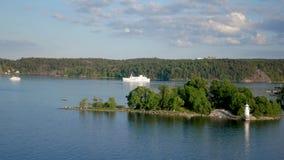 Να επιπλεύσει στα σκάφη ποταμών στην ακτή ενός δάσους πεύκων απόθεμα βίντεο