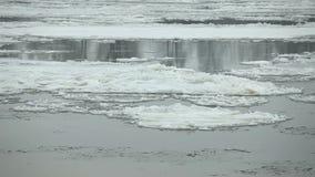 Να επιπλεύσει του πάγου στον ποταμό απόθεμα βίντεο