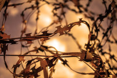 Να διαπεράσει το αιχμηρό καλώδιο στο φράκτη Σέπια Στοκ Εικόνες