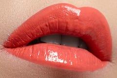 να ισχύσει σχολιάζει το χείλι κάνει επαγγελματικό επάνω Lipgloss κραγιόν Στοκ εικόνες με δικαίωμα ελεύθερης χρήσης