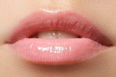 να ισχύσει σχολιάζει το χείλι κάνει επαγγελματικό επάνω Lipgloss κραγιόν Στοκ φωτογραφία με δικαίωμα ελεύθερης χρήσης