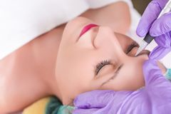 Να ισχύσει Cosmetologist μόνιμο αποτελεί στα φρύδια στοκ εικόνες