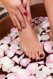 Να κάνει γυναικών aromatherapy Στοκ Εικόνες