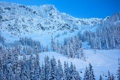 Να κάνει σκι βουνών χιονιού Chairlifts πέρασμα Ουάσιγκτον Snoqualme στοκ εικόνες με δικαίωμα ελεύθερης χρήσης