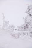 Να κάνει σκι επάνω από τον αρκτικό κύκλο Στοκ φωτογραφία με δικαίωμα ελεύθερης χρήσης