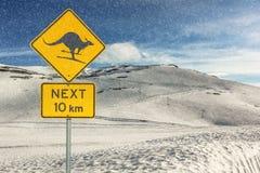 Να κάνει σκι καγκουρό προειδοποίησης στοκ εικόνα