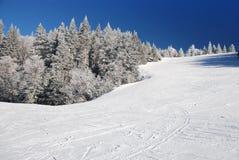 να κάνει σκι λόφων Στοκ φωτογραφίες με δικαίωμα ελεύθερης χρήσης