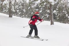 Να κάνει σκι σε ένα δασικό τοπίο χιονιού ο αθλητισμός χιονιού σκι ακολουθεί το χειμώνα Στοκ Εικόνες