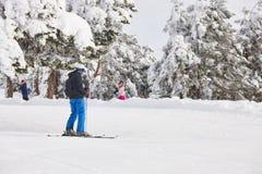 Να κάνει σκι σε ένα όμορφο δασικό τοπίο χιονιού ο αθλητισμός χιονιού σκι ακολουθεί το χειμώνα Στοκ εικόνα με δικαίωμα ελεύθερης χρήσης