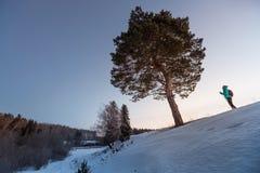 Να κάνει σκι στο δάσος Στοκ φωτογραφία με δικαίωμα ελεύθερης χρήσης