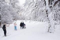 Να κάνει σκι στο πάρκο πόλεων Στοκ φωτογραφία με δικαίωμα ελεύθερης χρήσης