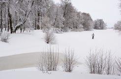 Να κάνει σκι στο πάρκο πόλεων Στοκ φωτογραφίες με δικαίωμα ελεύθερης χρήσης