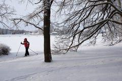 Να κάνει σκι στο πάρκο πόλεων Στοκ εικόνα με δικαίωμα ελεύθερης χρήσης