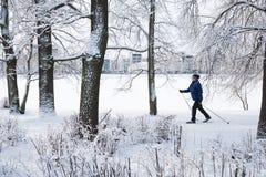 Να κάνει σκι στο πάρκο πόλεων Στοκ Φωτογραφίες