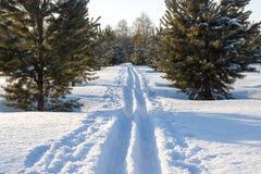 Να κάνει σκι χιονιού διαδρομή Στοκ φωτογραφίες με δικαίωμα ελεύθερης χρήσης