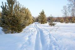 Να κάνει σκι χιονιού διαδρομή Στοκ φωτογραφία με δικαίωμα ελεύθερης χρήσης