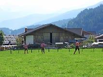 Να κάνει τριών ατόμων κτυπά το ράγισμα σε ένα λιβάδι στο Tirol στοκ εικόνες με δικαίωμα ελεύθερης χρήσης