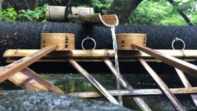 Να καθαρίσει περιοχή στο ναό Anyoji, Shiga, Ιαπωνία απόθεμα βίντεο