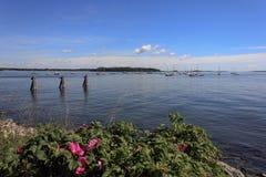 Να κοιτάξει έξω πέρα από τον κόλπο Casco σε PortlandMaine Στοκ εικόνα με δικαίωμα ελεύθερης χρήσης