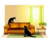 να κοιτάξει επίμονα απόκλισης σκυλιών 2 γατών Στοκ Εικόνα