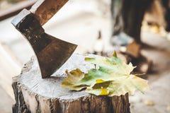 Να κολλήσει τσεκουριών στο λουτρό που βρίσκονται φύλλα σφενδάμου Στοκ φωτογραφία με δικαίωμα ελεύθερης χρήσης