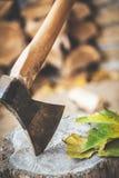Να κολλήσει τσεκουριών στο λουτρό στα πράσινα φύλλα Στοκ Φωτογραφία