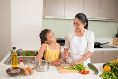 να μαγειρεψει από κοινού Στοκ Εικόνες