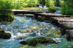 Να ορμήξει θερινών βουνών όψη ποταμών Στοκ φωτογραφία με δικαίωμα ελεύθερης χρήσης