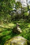 Να περπατήσει πέτρες Στοκ Εικόνες