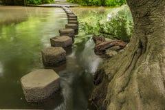 Να περπατήσει πέτρες Boxhill, Surrey, Αγγλία γ Στοκ Φωτογραφία