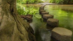 Να περπατήσει πέτρες Boxhill, Surrey, Αγγλία γ Στοκ φωτογραφίες με δικαίωμα ελεύθερης χρήσης