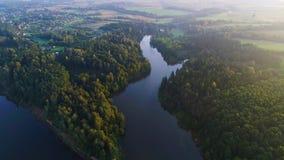 Να πετάξει επάνω από την ομιχλώδη λίμνη νωρίς το πρωί απόθεμα βίντεο