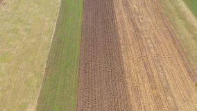 Να πετάξει πέρα από το γεωργικό τομέα με το χημικό λίπασμα την άνοιξη απόθεμα βίντεο