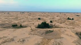 Να πετάξει προς τα πίσω πέρα από τους γραφικούς αμμόλοφους άμμου στην έρημο φιλμ μικρού μήκους