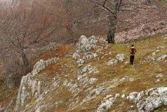 Να πραγματοποιήσει οδοιπορικό στα βουνά Mehedinti το φθινόπωρο στοκ φωτογραφίες