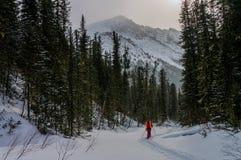 Να πραγματοποιήσει οδοιπορικό στα βουνά το χειμώνα στοκ εικόνα με δικαίωμα ελεύθερης χρήσης