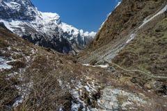 Να πραγματοποιήσει οδοιπορικό το ίχνος στο στρατόπεδο βάσεων Annapurna, ABC, Pokhara, Νεπάλ Στοκ Φωτογραφίες