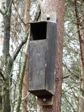 Να τοποθετηθεί κιβώτιο για τις κουκουβάγιες στη δασώδη περιοχή στοκ εικόνες