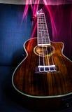 Να φλεθεί ukulele Στοκ φωτογραφίες με δικαίωμα ελεύθερης χρήσης