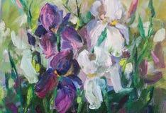 Να χρωματίσει ακόμα τη σύσταση ελαιογραφίας ζωής, impressionism α ίριδων Στοκ Εικόνες
