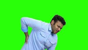 Νεαρός άνδρας με τον πόνο στα νεφρά στην πράσινη οθόνη απόθεμα βίντεο