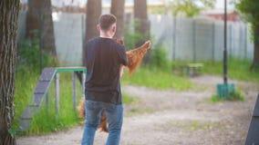 Νεαρός άνδρας που ένας ιρλανδικός ρυθμιστής σκυλιών στα όπλα του υπαίθρια στο θερινό πάρκο απόθεμα βίντεο
