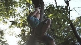 Νεαρός άνδρας που αναρριχείται σε ένα δέντρο με τα μακριές σχοινιά και τις ζώνες το καλοκαίρι στην slo-Mo απόθεμα βίντεο