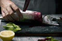 Νεαρός άνδρας που κόβει ένα φρέσκο σκουμπρί Στοκ Εικόνες
