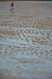 Νεαρός άνδρας με το φτυάρι στην παραλία Στοκ φωτογραφία με δικαίωμα ελεύθερης χρήσης