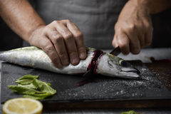Νεαρός άνδρας που κόβει ένα φρέσκο σκουμπρί Στοκ Εικόνα