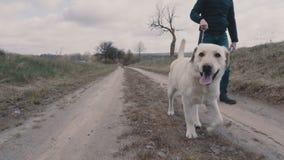 Νεαρός άνδρας που περπατά με το σκυλί του κατά μήκος του βρώμικου δρόμου απόθεμα βίντεο