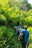 Νεαρός άνδρας σε ένα ταξίδι τομέων στη δασική εκλεκτική εστίαση Στοκ φωτογραφία με δικαίωμα ελεύθερης χρήσης