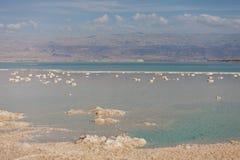 Νεκρά αλατισμένα πέτρες και κρύσταλλα θάλασσας στη νεκρή θάλασσα r στοκ φωτογραφίες με δικαίωμα ελεύθερης χρήσης